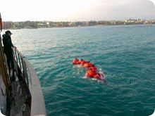STCW Sea Survival crocodile